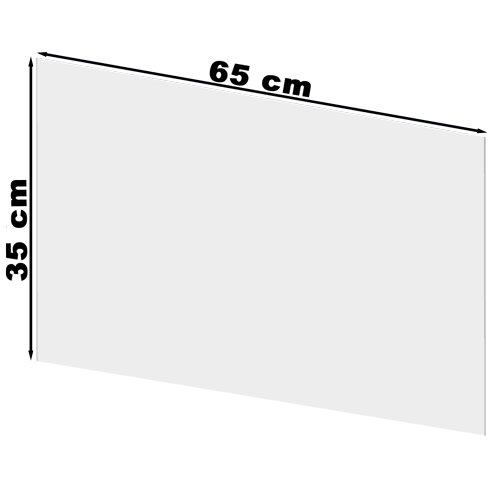 Plexiglasscheibe von Karl Dahm für Staubset Art. 12310